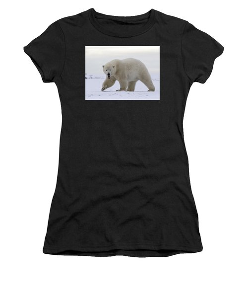 Stepping Out In The Arctic Women's T-Shirt