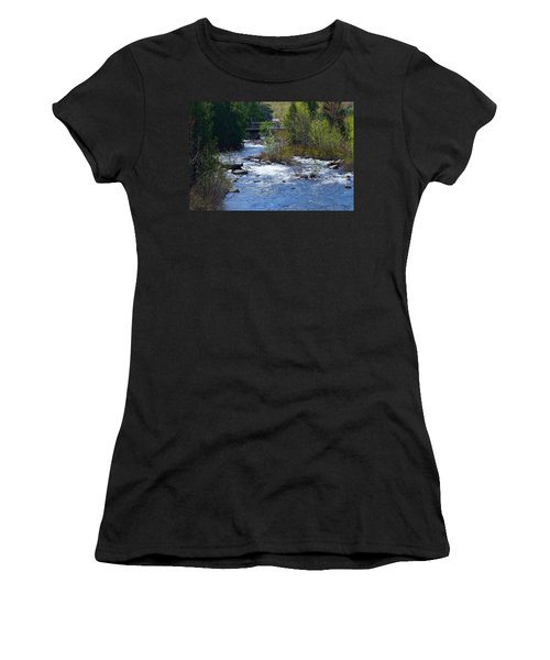 Stream In Spring Women's T-Shirt (Athletic Fit)