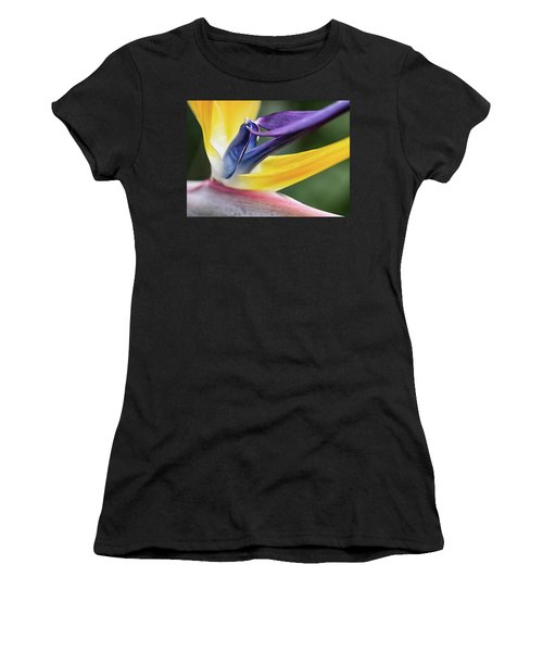Strelitzia Women's T-Shirt (Athletic Fit)