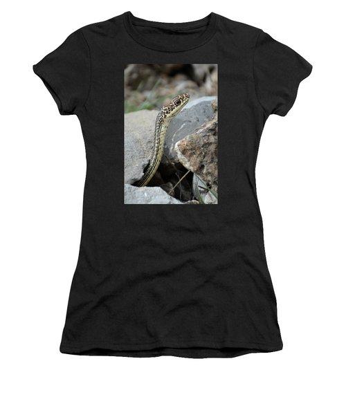 Striped Whipsnake, Masticophis Taeniatus Women's T-Shirt
