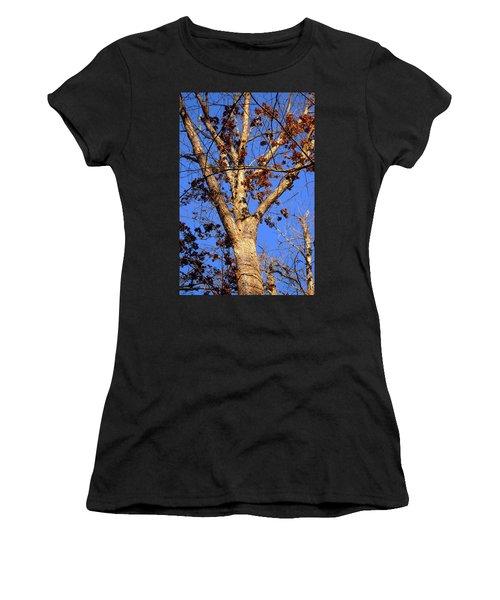 Stunning Tree Women's T-Shirt