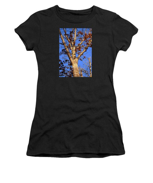 Stunning Tree Women's T-Shirt
