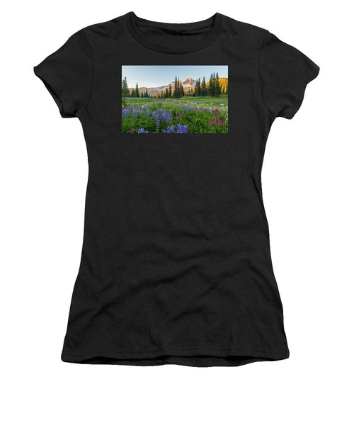 Summer Beauty At Indian Henry's Hunting Ground Women's T-Shirt