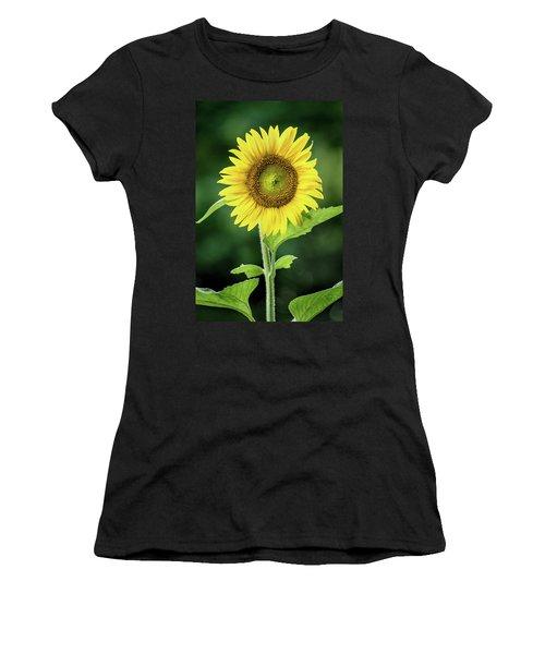 Sunflower In Bloom Women's T-Shirt