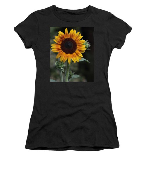 Sunflower Women's T-Shirt
