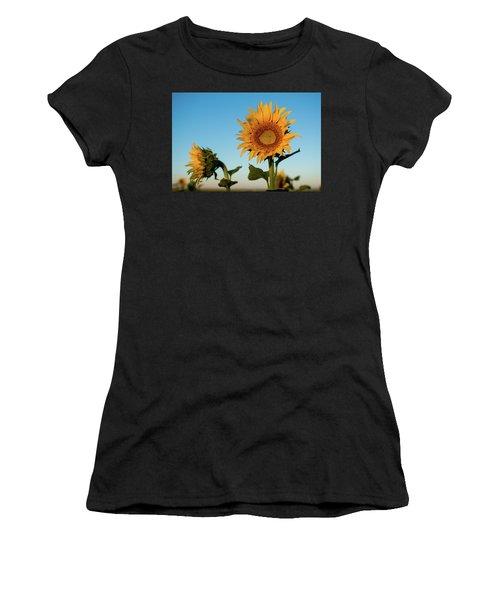 Sunflowers At Sunrise 1 Women's T-Shirt
