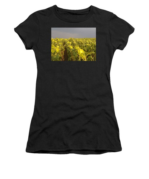 Sunflowers Before The Storm Women's T-Shirt (Athletic Fit)