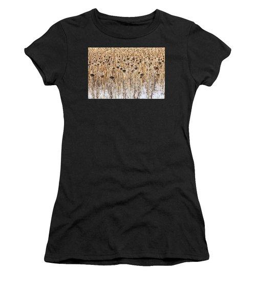 Sunflowers In Snow Women's T-Shirt