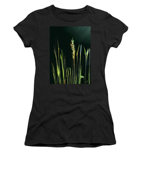 Sunlit Grasses Women's T-Shirt
