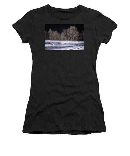 Sunlit Trees Women's T-Shirt