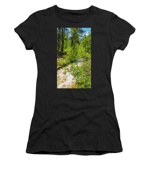 Swift And Deep Women's T-Shirt