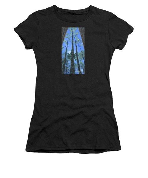 Tall Blue Ridge Beauty Women's T-Shirt (Athletic Fit)