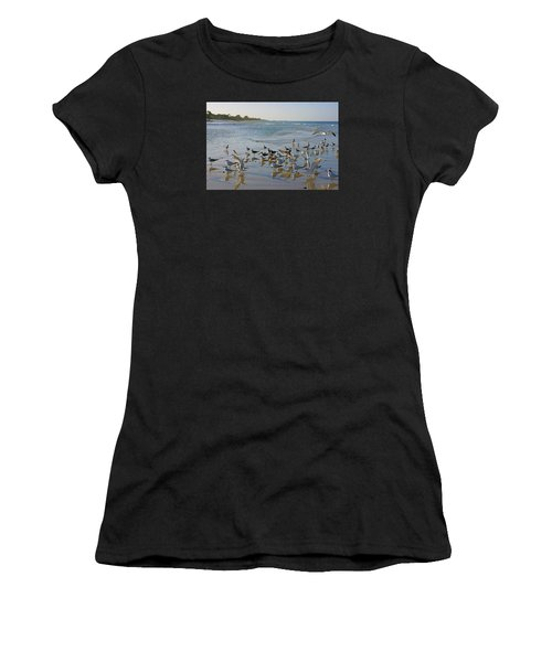 Terns And Seagulls On The Beach In Naples, Fl Women's T-Shirt