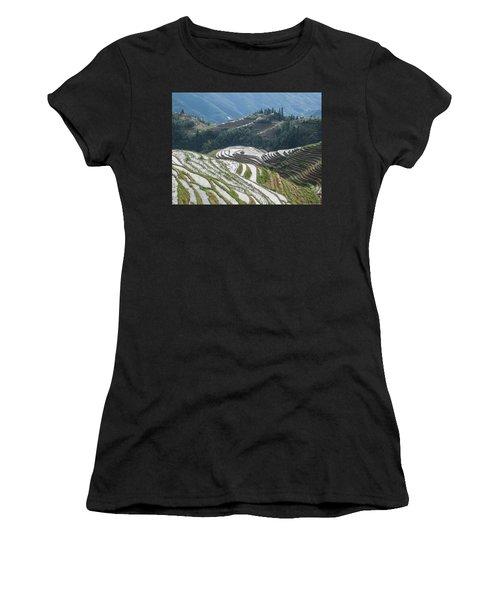 Terrace Fields Scenery In Spring Women's T-Shirt