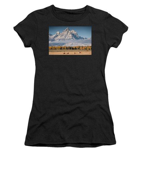 Teton Horses Women's T-Shirt