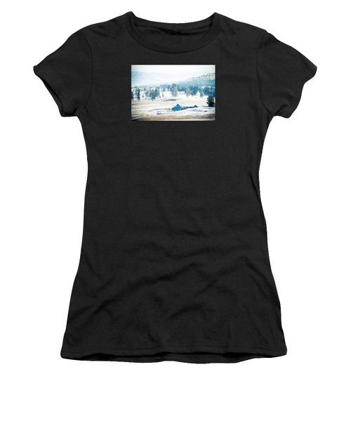 The Blue Barn Women's T-Shirt