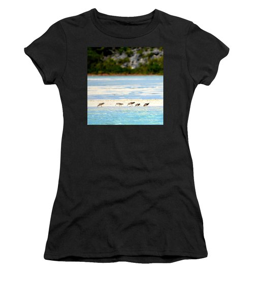 The Five Sandpipers Women's T-Shirt