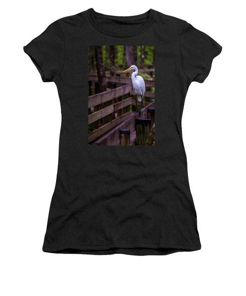 The Great Egret Women's T-Shirt
