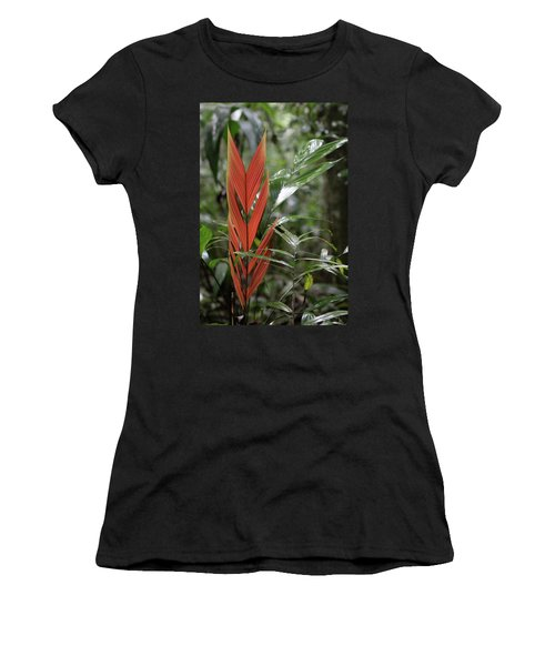 The Heart Of The Amazon Women's T-Shirt (Athletic Fit)