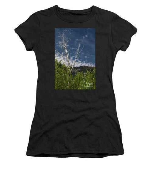 The Lonely Aspen  Women's T-Shirt (Athletic Fit)
