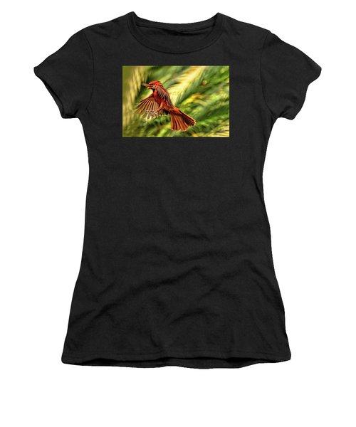 The Male Cardinal Approaches Women's T-Shirt