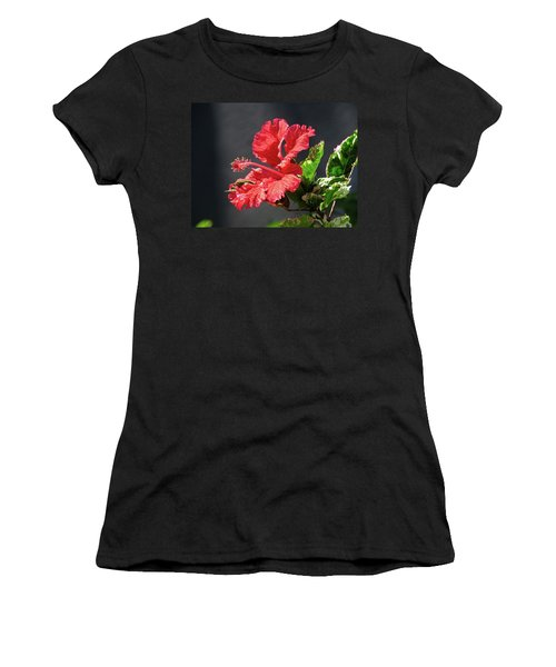 The Mallow Hibiscus Women's T-Shirt (Athletic Fit)