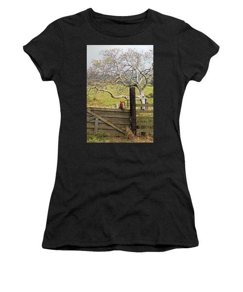 The Maui Daze Women's T-Shirt (Athletic Fit)
