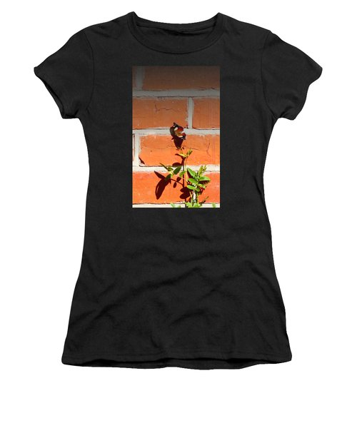 Women's T-Shirt featuring the photograph The Poetry Of Ordinary Things by Ivana Westin