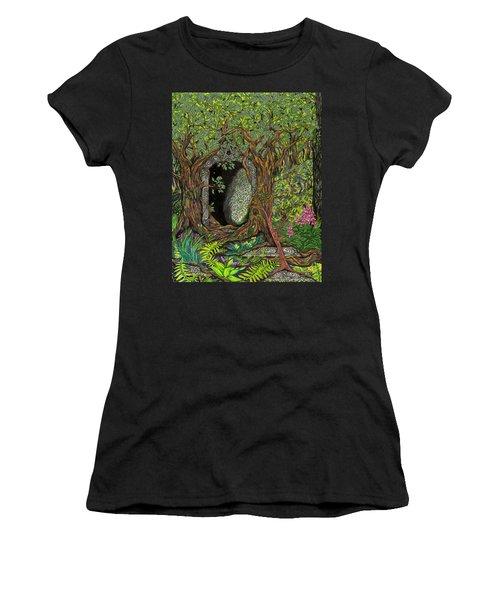 The Temple Of Math Women's T-Shirt
