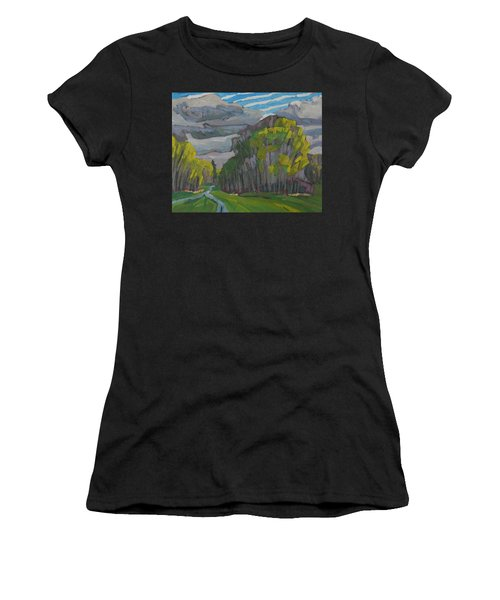 Thirty Shades Of Green Women's T-Shirt