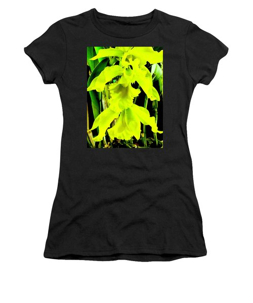 Three Orchids In Yellow Women's T-Shirt