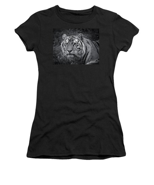 Tiger In The Grass Women's T-Shirt (Junior Cut) by Darcy Michaelchuk