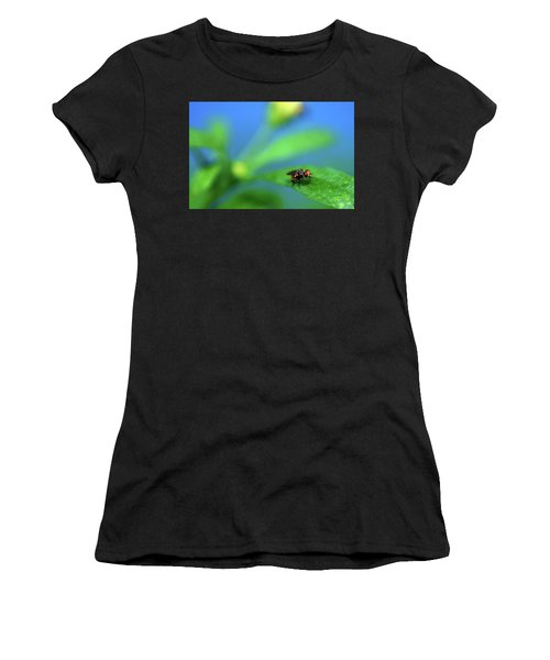 Tiny Fly On Leaf Women's T-Shirt
