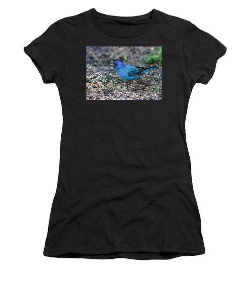 Tiny Indigo Bunting Women's T-Shirt