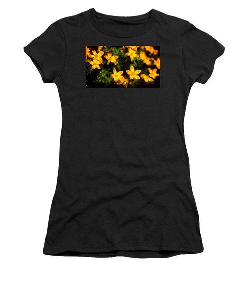 Tiny Suns Women's T-Shirt