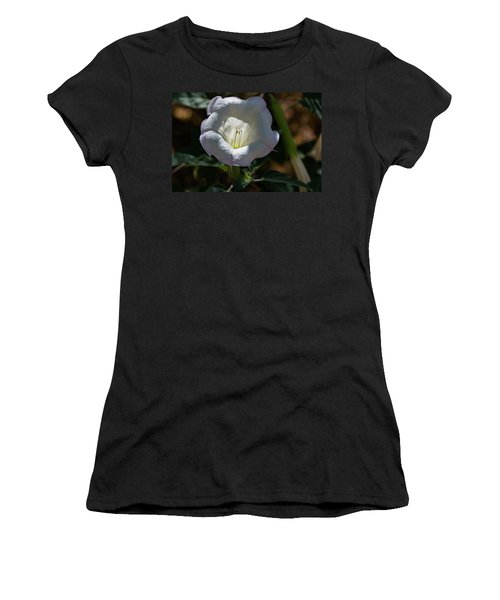 Touch Of Color Women's T-Shirt