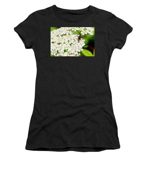 Transverse Flower Fly Women's T-Shirt
