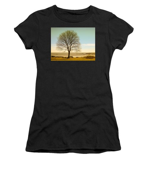 Tree At New Castle Common Women's T-Shirt