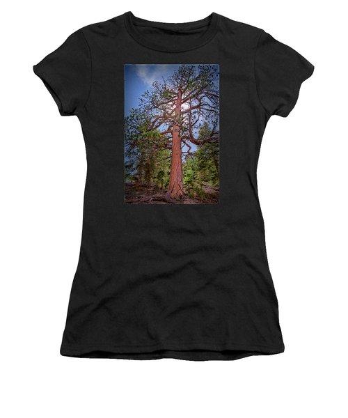 Tree Cali Women's T-Shirt
