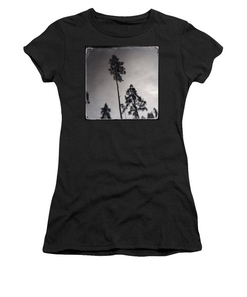 Trees Black And White Wetplate Women's T-Shirt