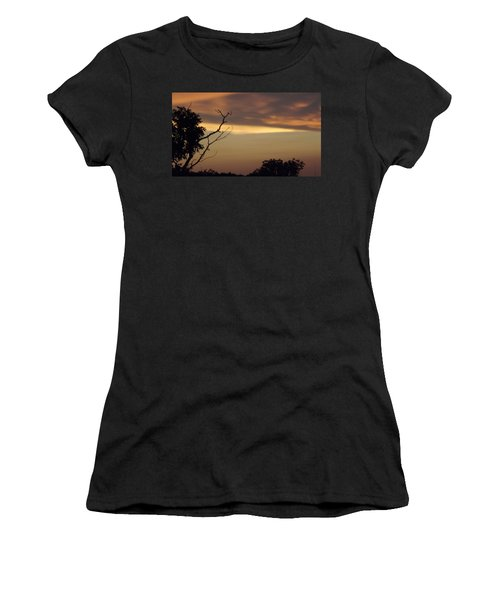 Trees Of The Lake Women's T-Shirt (Junior Cut) by Don Koester