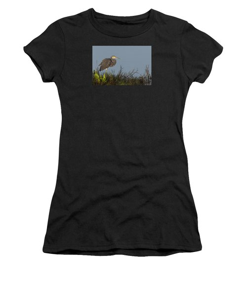 Tri-colored Heron In The Morning Light Women's T-Shirt