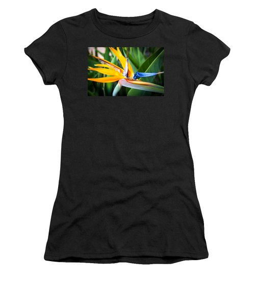 Tropical Closeup Women's T-Shirt