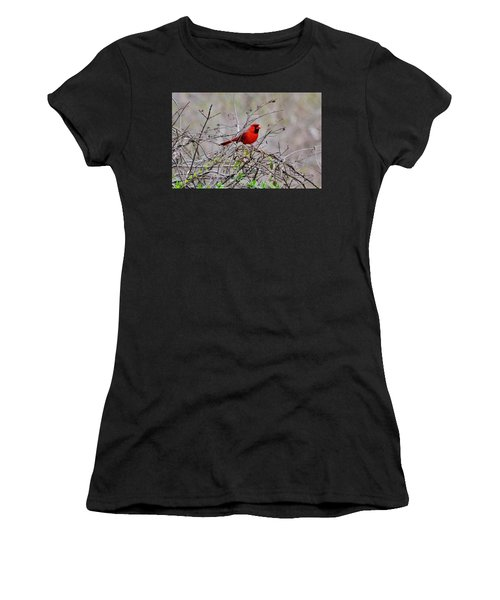Troy Women's T-Shirt (Athletic Fit)