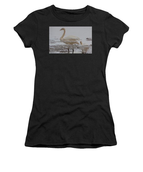 Trumpeter Swan Reflection Women's T-Shirt (Athletic Fit)