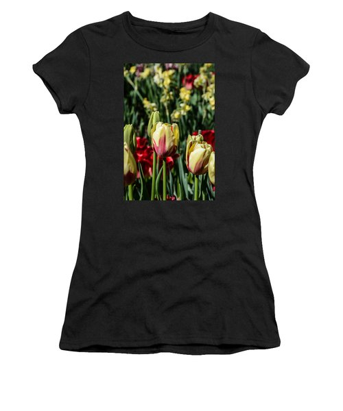 Tulip Garden Women's T-Shirt (Athletic Fit)