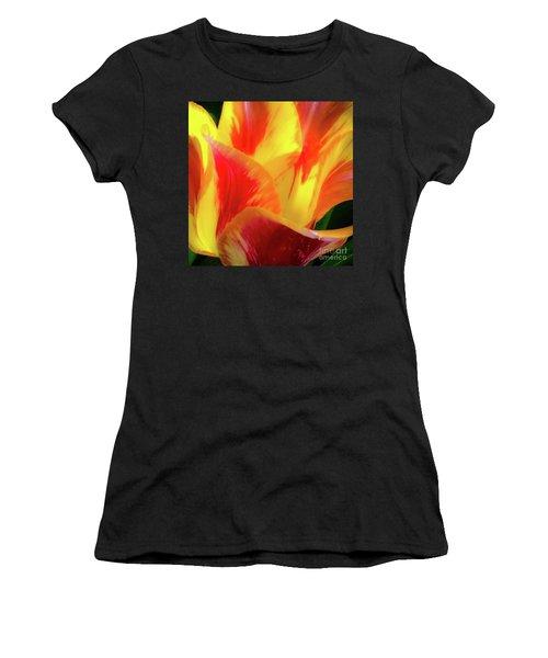 Tulip In Bloom Women's T-Shirt
