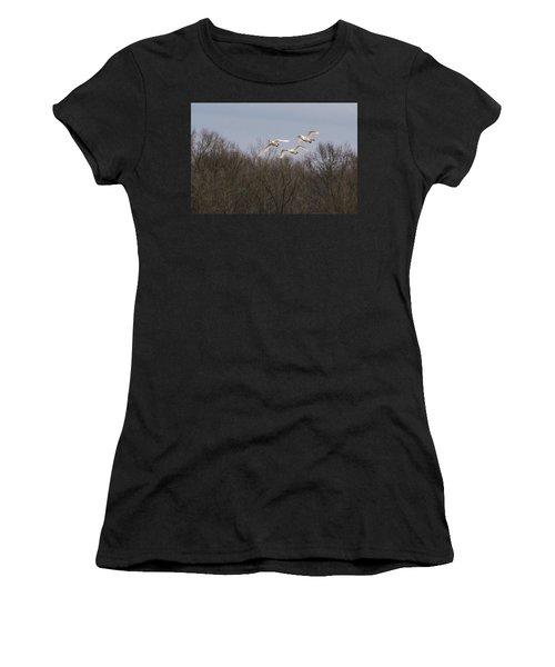 Tundra Swan Trio Women's T-Shirt