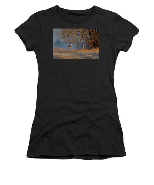 Up And Over Women's T-Shirt