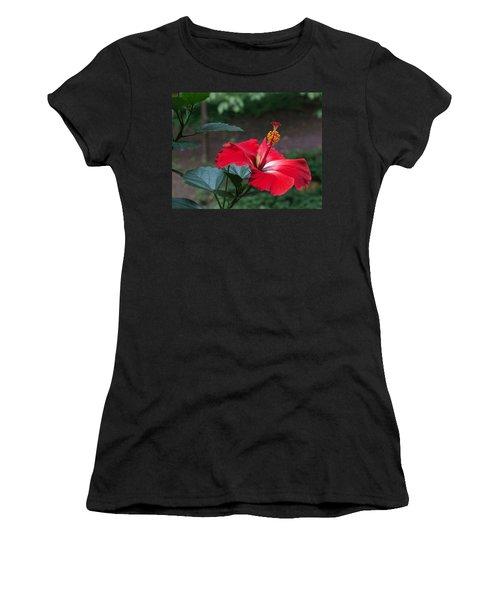 Vivid Hibiscus Women's T-Shirt